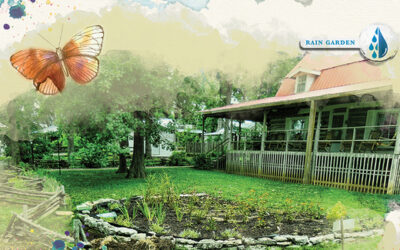 Take Charge of Your Water with a Rain Garden